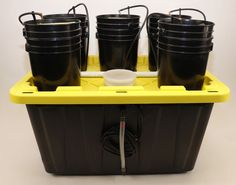 Hydroponic 5 Plant Grow System Kit Real Hydroponic System