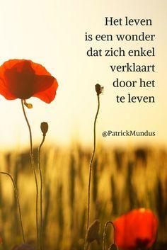 Het leven is een wonder dat zich enkel verklaart door het te leven...