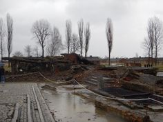 Ruine van een Verbrandingscomplex. Capaciteit: 2000 mensen kunnen per keer worden vergast, 1500 mensen kunnen per dag worden gecremeerd.