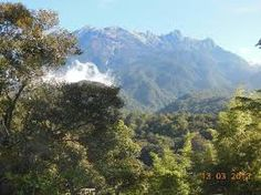 mong the most important natural attractions in the world, mount Kinabalu is known to be the home of over 4500 species of plants, 326 species of birds and 100 mammal species - and scientists do not think they have yet discovered all the plants and animals that live in the area.