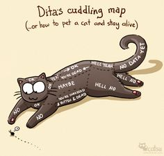 CatsuTheCat.com - Dita's cuddling map (...or how to pet a cat and stay alive). #cat #illustration #petting