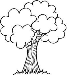 www.maestragemma.com alberi_con_chioma.htm