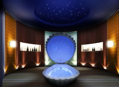 A pretty sensory deprivation tank that looks like a shell and has stars inside:)