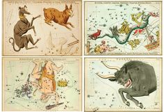Google Image Result for http://www.rifledesign.com/blog/june10/constellations.jpg?__SQUARESPACE_CACHEVERSION=1276609835968