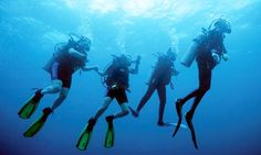 Get scuba diving certification Miami at South Beach Dive and Surf is a renowned PADI 5 Star facility conveniently located in the heart of Miami Beach's trendy and vibrant South Beach. Their location is within walking distance to most hotels, restaurants, Scuba Diving Courses, Best Scuba Diving, Scuba Diving Gear, Cave Diving, Cannes, Scuba Diving Certification, Sports Nautiques, Water Sports, Diving School