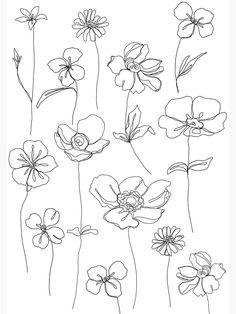 Line Art Flowers, Flower Art, Flower Frame, Floral Drawing, Drawing Flowers, Painting Flowers, Simple Flower Drawing, Simple Flowers, Floral Flowers