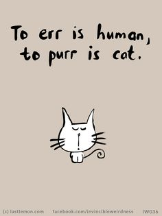 Truth! =^..^= www.kittyprettygifts.com #cats #lolcats #memes #cute