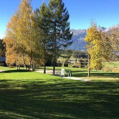 Yes#golf #lovetirol #fall #mygolf #mylife #thegolfbroadcaster #thegolfstagram #golfbroadcaster #motivation
