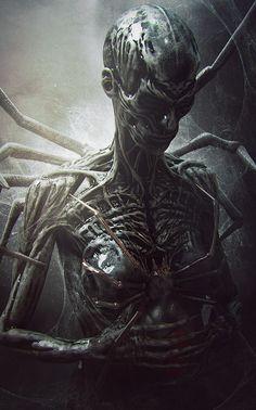 The Black Widow by Wojciech Magierski