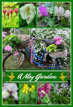 May Garden ~ Our Fai