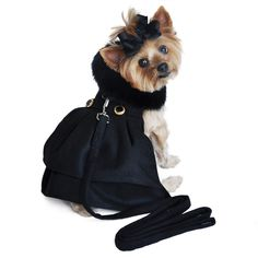 Black Wool  Minky Fur Harness Jacket with Matching Leash in color Black