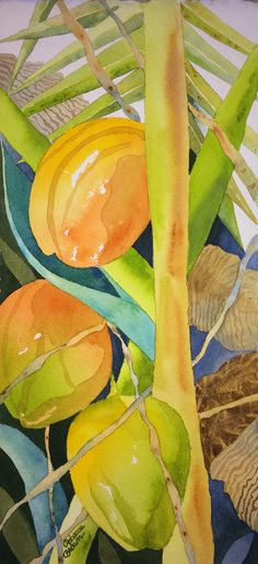 Coconuts 8.5 x 18 by Rebecca Brown