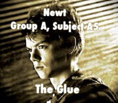 The Maze Runner edit by me (EmmaJoy) feel free to repin but please give credit