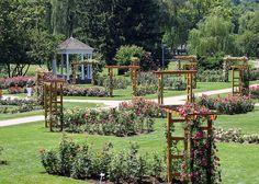 allentown rose garden | Allentown, PA Rose Garden | Flickr - Photo Sharing!