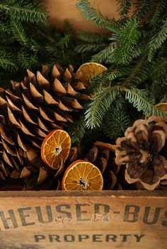 The best DIY projects & DIY ideas and tutorials: sewing, paper craft, DIY. Diy Crafts Ideas Diy: Dry orange slices by cutting the fruit and then baking them in a 200 degree oven for 3 hours to dry them out. Just flip the fruit Noel Christmas, Primitive Christmas, Country Christmas, Winter Christmas, All Things Christmas, Xmas, Natural Christmas, Christmas Smells, Christmas Ideas