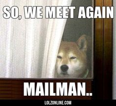 Been Waiting for You#funny #lol #lolzonline