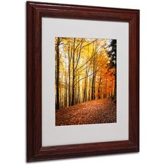 Trademark Fine Art Yellow Moment Canvas Art by Philippe Sainte-Laudy, Wood Frame, Size: 11 x 14, Multicolor