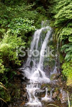 Kahurangi Waterfall, Tasman Region, New Zealand Royalty Free Stock Photo