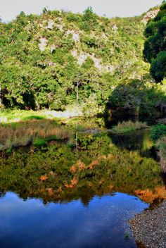 At the Groot river near Nature's Valley near Plettenberg Bay, South Africa.