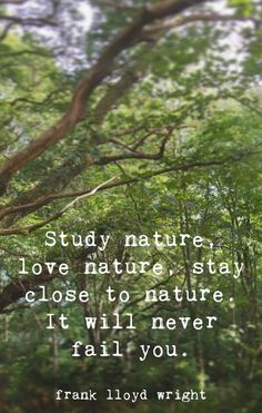 Study nature, love nature, stay close to nature. It will neer fail you. Into The Woods Quotes, Green Living Tips, Natural Homes, Let's Have Fun, Home Quotes And Sayings, Rich Life, Closer To Nature, Nature Quotes, Love Words