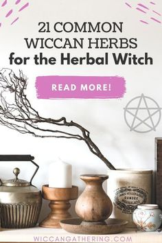 Herbal Witch, Herbal Magic, Witchcraft Herbs, Magick Spells, Teas For Headaches, Witchcraft For Beginners, How To Dry Rosemary, Candle Magic, Spiritual Life