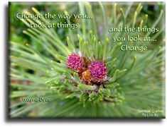 'Change the way you look at things, and the things you look at change.' Wayne Dyer quote on nature photo - Spiritual Quotes To Live By