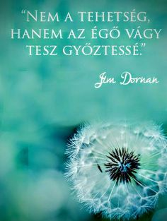 Jim Dornan gondolata a tehetségről. Positive Quotes, Motivational Quotes, Inspirational Quotes, Clean9, Rose Soap, Morning Greetings Quotes, Mind Tricks, Powerful Words, Good Vibes