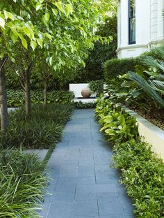 GREEN PATH IN GARDEN old doors as gates...love it! Garden horizontal fencing and tall contemporary planters - Gaskin Street brick pathways i...