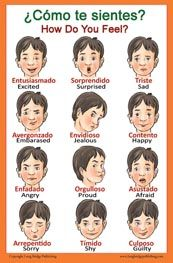 Common words about feelings in Spanish with English translation (Bilingual Poster)