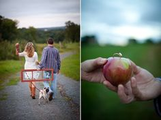I want my engagement ring given to me in an apple... so cute.