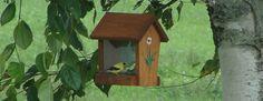 Archipel de l'Isle-aux-Grues Summer Activities, Bird, Outdoor Decor, Home Decor, Archipelago, Homemade Home Decor, Birds, Decoration Home, Summer Fun