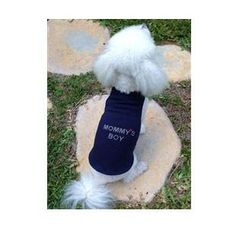 Mommy's Boy Tank by Daisy and Lucy - BD Luxe Dogs & Supplies