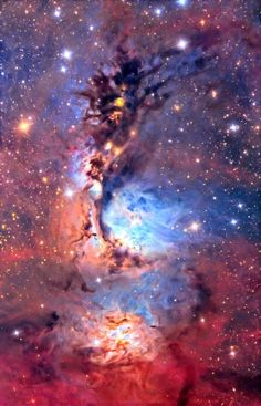 The Starry Dragon | Interstellar dust clouds and bright nebulae abound in the fertile  constellation of Orion. One of the brightest, M78, is just under of center in this colorful telescopic view  covering an area north of Orion's belt. At a distance of about 1,500 light-years, the bluish nebula itself is about 5 light-years across.
