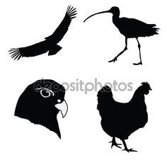 черный силуэт птицы - Поиск в Google