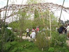 sculture osier brut bambou