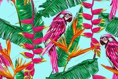 Jungle pattern with parrots by Tropicana on @creativemarket