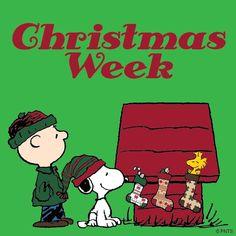 Christmas week! ~ Charlie Brown, Snoopy, and Woodstock