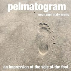One of her favorite things to do on the beach is to try and walk in others pelmatograms. Unusual Words, Weird Words, Rare Words, Big Words, Unique Words, Great Words, Powerful Words, Beautiful Words, Foreign Words