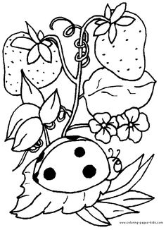 Ladybug with strawberries animal coloring pages, color plate, coloring sheet,printable coloring picture