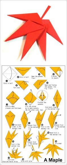 Origami. Maple Leaf. Leaves.