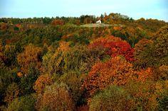 Auch die Merziger Kreuzbergkapelle ...  freute sich heute über den herrlichen Oktobertag. Saarländischer Herbst vom Feinsten ! :-)