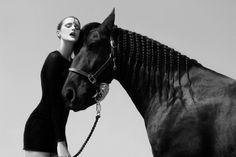 www.lacavalieremasquee.com / Jenni Porkka: Horses