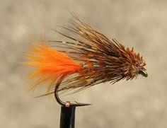 Orange tail muddler minnow.