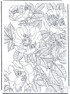 kleurplaten bloemen - Google zoeken