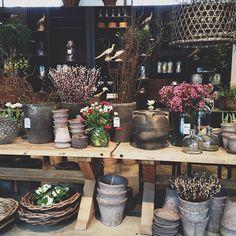Springtime!  I  Trädgårdsbutiken I Zetas - Finsmakarens Trädgård