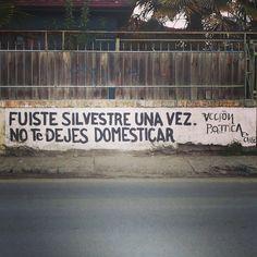 Acción poética Chile #Acción Poética Chile #accionpoetica