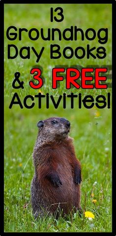 13 Groundhog Day books, perfect for read alouds, plus 3 FREE activities!