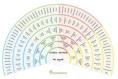 voorgedrukte blanco kwartierstaten van groot formaat in ronde vorm » Genealogie algemeen » Stamboom Forum