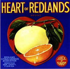 Florida FL - Homestead Heart of Redlands Orange Crate Label Art Print - Florida Citrus Fruit Crate Label Art Prints - Fruit and Vegetable Crate Label Art Prints Vintage Advertisements, Vintage Ads, Vintage Prints, Vintage Posters, Advertising Signs, Vintage Signs, Vintage Food Labels, Orange Crate Labels, Label Art