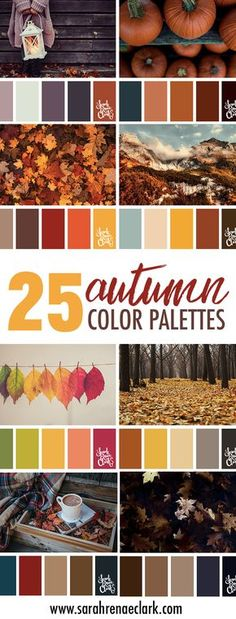 25 Autumn color schemes   Click for more fall color combinations, mood boards and seasonal color palettes at http://sarahrenaeclark.com